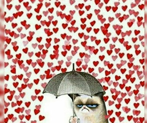 hater, Valentine's Day, and grumpy cat image