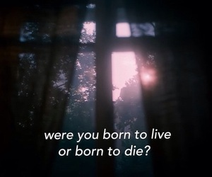 quotes, die, and born image