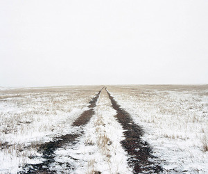 grass, winter, and road image