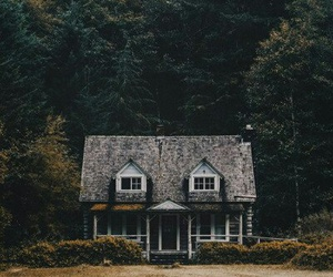 atmosphere, forest, and home image