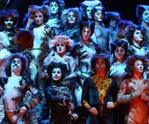 broadway, cats, and dance image