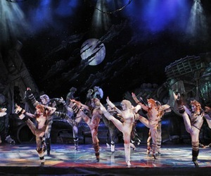 broadway, cats, and bonballerina image