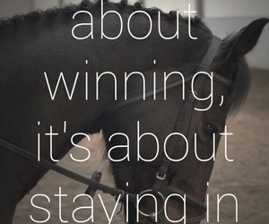 horse, competition, and quote image