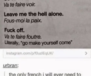 french, insult, and tumblr post image