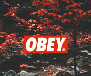 obey, popular, and wallpaper image