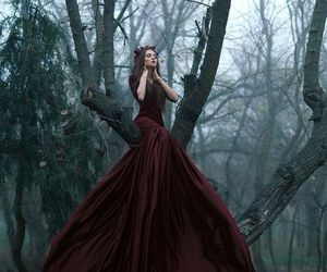 forest, dress, and fantasy image