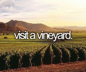 vineyard, bucket list, and bucketlist image