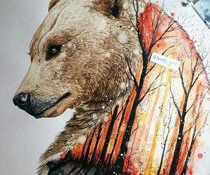 bear and drawing image