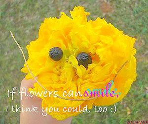 flower, typography, and cute image