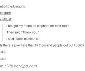 elephant, funny, and jokes image