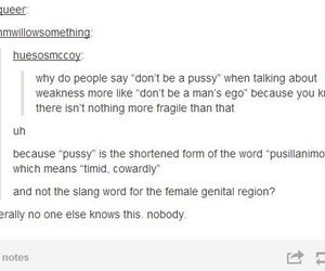 funny, knowledge, and tumblr image