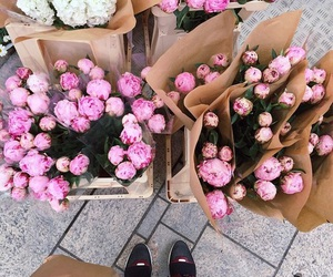 flowers, pink, and rose image