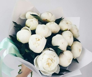 beautiful, flower's, and flowers image