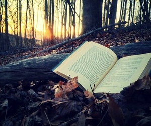 book, nature, and forest image