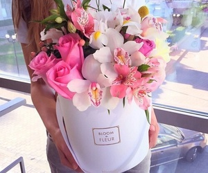 beautiful, flowers, and gift image