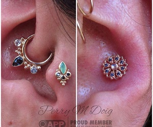 conch, daith, and goals image