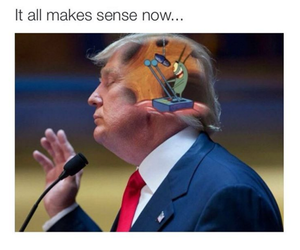 funny, lol, and trump image
