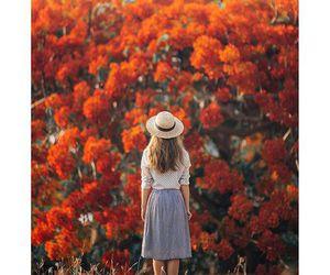 boho, flowers, and photography image