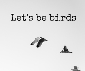 birds, wallpaper, and love image