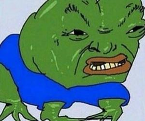 frog, pepethefrog, and pepe image