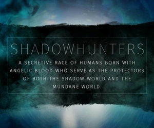 shadowhunters and the mortal instruments image