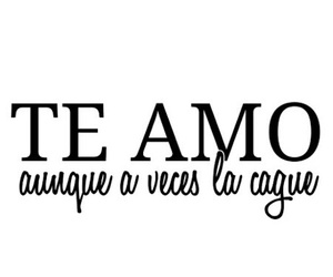 frases, te amo, and love image