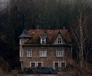 house, home, and forest image