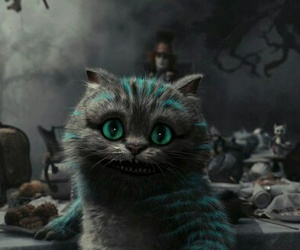 cat, alice in wonderland, and Cheshire cat image