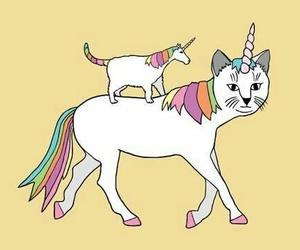 unicorn, cat, and rainbow image