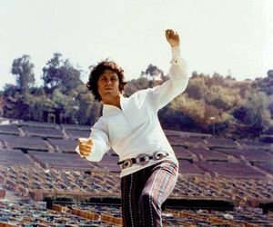 Jim Morrison and the doors image