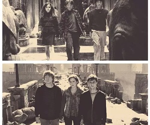 always, dumbledore, and potter image