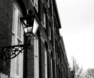 black and white, city, and light image