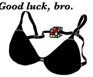 bra, funny, and bro image