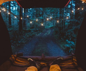 adventure, forest, and lights image