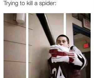 teen wolf, funny, and spider image