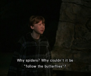 butterfly, ron, and spiders image