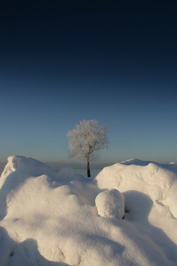 neige, photography, and snow image