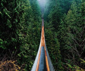 landscape, adventure, and explore image