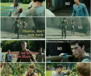 newt, the maze runner, and thomas image