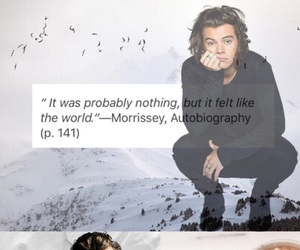 indie, quotes, and Harry Styles image
