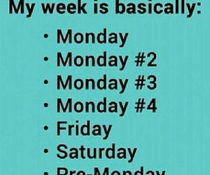 funny, monday, and week image