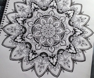 art, floral, and mandala image