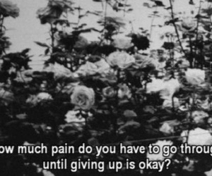 pain, quotes, and flowers image