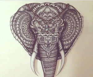 elephant, drawing, and tattoo image