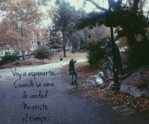 endless love, frases, and love image
