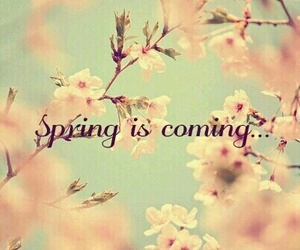 spring, hello, and march image