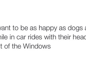 dogs, love, and happiness image