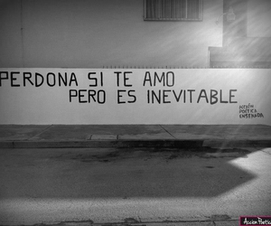 te amo, accion poetica, and inevitable image
