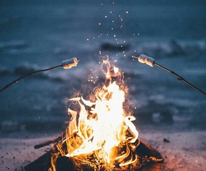 fire, marshmallow, and summer image