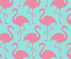 blue, wallpaper, and flamingo image